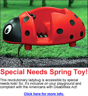 playground equipment for special needs